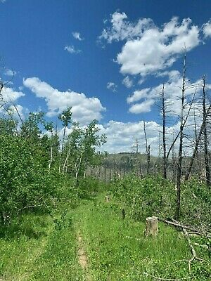 20 Acres in Larimer County, Colorado