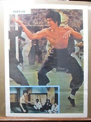 Bruce Lee Martial Arts Giant 1 Piece  Wall Art Poster C102