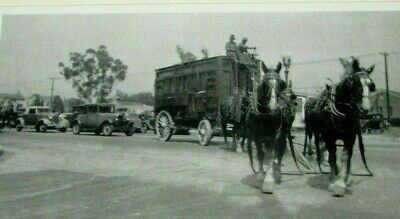 143-b 1903 Vintage MILK DELIVERY WAGON Photo