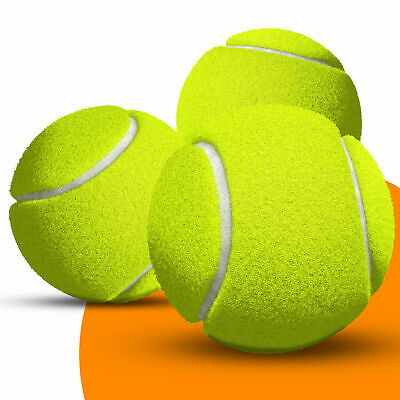 24 Tennis Balls Ball Games Dog Pet Toy Pets Bouncing Sports Outdoor Games Fun