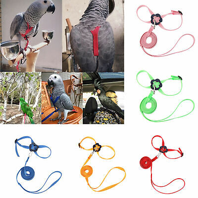 Parrot Bird Leash Adjustable Harness Pets Anti Flying Outdoor Training Lead Rope