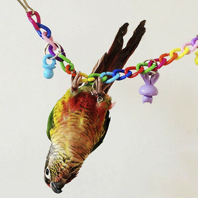 HOT Colorful Parrot Swing Cage Toys Bird Parakeet Cockatiel Budgie Lovebird Toy