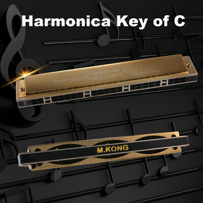 Professional 24 Hole Harmonica Key of C Mouth Organ Metal for Beginners TH1293