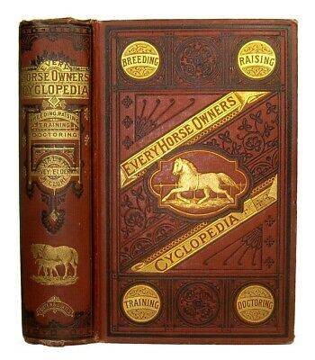 Thoroughbred HORSE Guide ARABIAN 1871 FARM Mustang Morgan EQUESTRIAN Antique