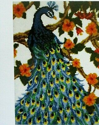 """Latch Hook Rug Kit  """"A Peacock"""" Size 27"""" X 39.5"""" Free Uk Postage"""