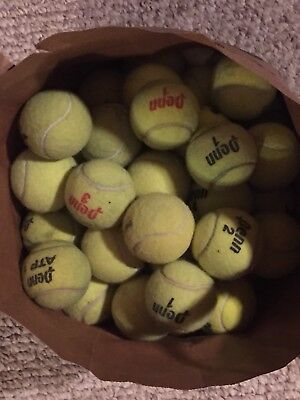 LOT of 50 Tennis Balls Dogs Fetch Bottom of Walkers Chairs Play Catch Toys craft