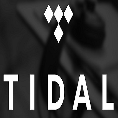 💥 TIDAL PREMIUM FAMILY Plan  6 Users 6 Months GUARANTEED 💥 like spotify deezer