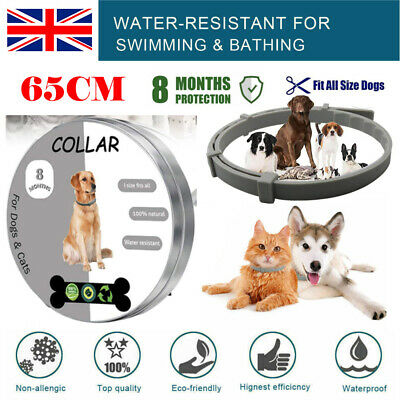 65CM Adjustable Flea and Tick Collar 8 months Protection for Small Large Dog&Cat