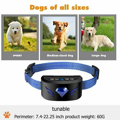 Dog Bark Collar Rechargeable Anti-Barking Training Collar for Large Dogs CT