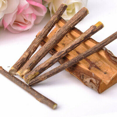 Cat Snacks Matatabi Chew Catnip Stick Teeth Molar Funny Tool Cleaning Brush Toys