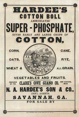 1880 Broadsheet Ad for Savannah based Hardee's Son Cotton Fertilizer