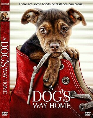 A Dog's Way Home DVD