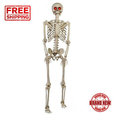 5 Ft Poseable Skeleton Halloween Decoration Life Size LED Eyes Light Realistic
