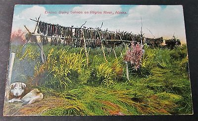 ESKIMO DRYING SALMON ON PILGRIM RIVER Tinted RPPC Alaska Early 20th Century