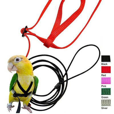 Pet Parrot Bird Harness Lead Leash Flying Training Rope Cockatiel Outdoor XS-XL