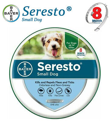 Bayer seresto Flea Tick Collar for Small dog 8 Months Control and Treatment