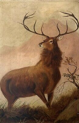 Antique Scottish Signed Oil Painting - The Highland Stag Standing In Landscape