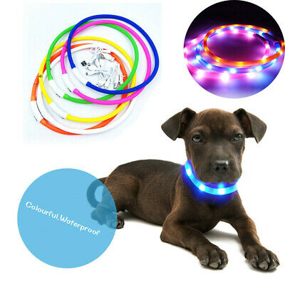 USB Rechargeable Pet Collar LED Adjustable Flashing Light Waterproof Dog Band