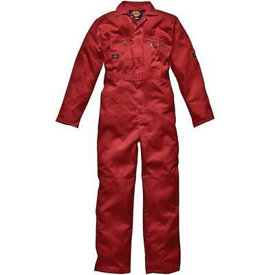 Dickies WD4839, Large (Taille fabricant: 40UK/44FR), Rouge (Rouge)