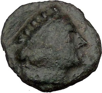 CHERSONESOS Tauric Chersonesos Artemis Stag Possibly UNIQUE Greek Coin i38251