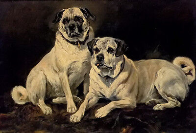Dream-art Oil painting john emms - pugs two white dogs hand painted no framed