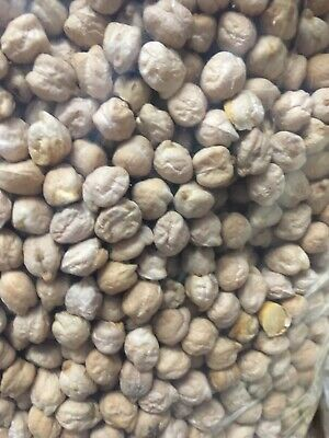 Australian Grown Chickpeas 25 Kg, Caters Bulk Buy, Pick Up Or Freight