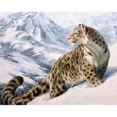 Home Decor Canvas Paint By Numbers Kit Oil Painting DIY Snow Leopard Decorate