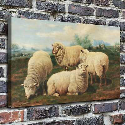 Sheep pets Paintings HD Print on Canvas Home Decor Wall Art Pictures posters