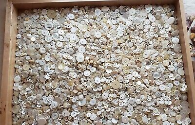 * 6+ Pound Lot Vintage Mop & White Buttons * Sewing / Crafting Buttons *  Huge