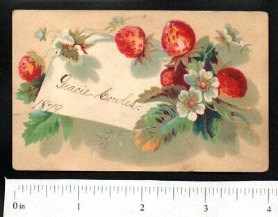 1879 Strawberry Flowers 1880'S Victorian Advertising Trade Card No Ad