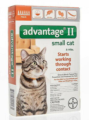 6 Pack, Advantage II for Small Cats (5-9 lbs)