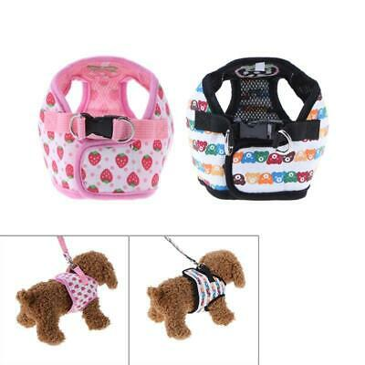 Cute Strawberry Bear Dog Harness for Small Dogs With Leash Puppy Cat Collar Pets