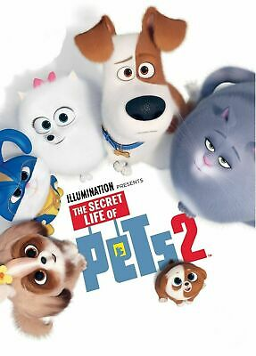 The Secret Life of Pets 2 [DVD] Used, in excellent condition.