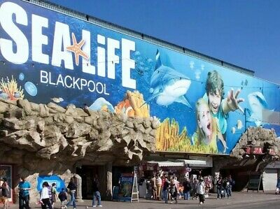 Unwanted Gift - 4 TICKETS FOR SEA LIFE BLACKPOOL Sunday 29 December