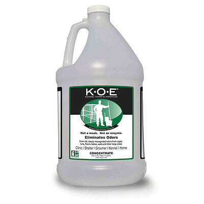 Dog Kennel Odor Eliminator Concentrate Gallon Shelter Vet Pet Rescue Solution