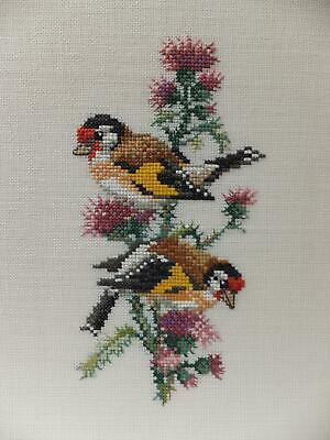 Goldfinch Bird & Thistle Hand Stitched Cross Stitch Needlework Tapestry Picture