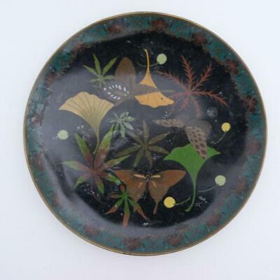 Japanese Cloisonne Charger, Meiji Period, 19Th Century