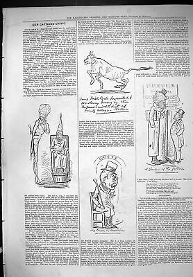 Old Print Captious Critic Theatre 1876 Gaiety Man In Posession Irish Bull 19th