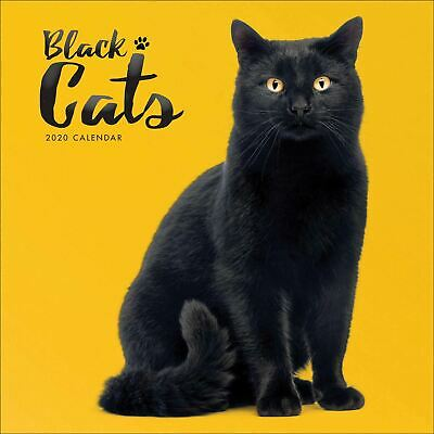 Black Cats 2020 Square Calendar by Carousel