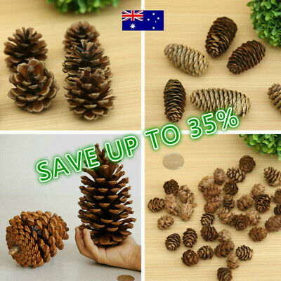 Natural Dried Flowers Pine Cones Ornament Christmas Tree Decor Party Supplies ^