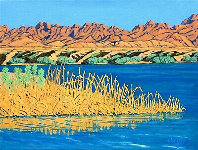 Colorado River Near Yuma Arizona Desert Landscape Original Ready To Hang