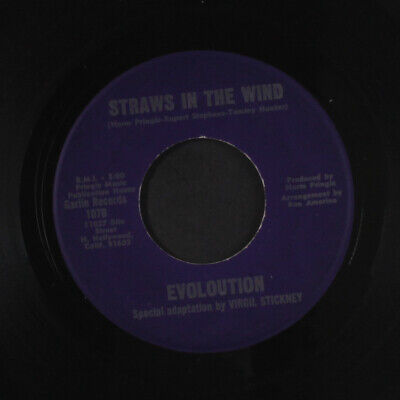 EVOLUTION: Straws In The Wind / Sandra Allison Jeffrey And Bill 45 (obscure an