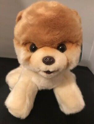 "BOO 9"" Plush Pomeranian by Gund Worlds Cutest Dog New With Tags"