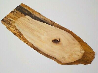 Waney edge English Horse Chestnut wood board.  Chopping board, slab plank.  3635