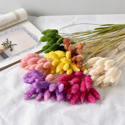 Real Dried Flower Art Decor bouquet Party Use jewelweed Artificial Flowers AU