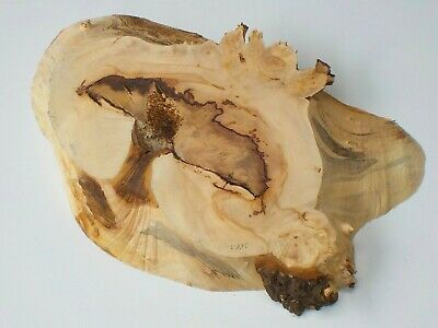 Waney edge Burr English Horse Chestnut wood board. Plank, slab, shelf.  3663