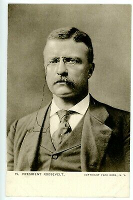 Political -PORTRAIT OF PRESIDENT THEODORE ROOSEVELT- Pach Bros Postcard