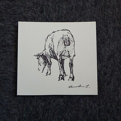 Original signed small mini pen & ink drawing sheep on paper 13.5cm x 12.5cm