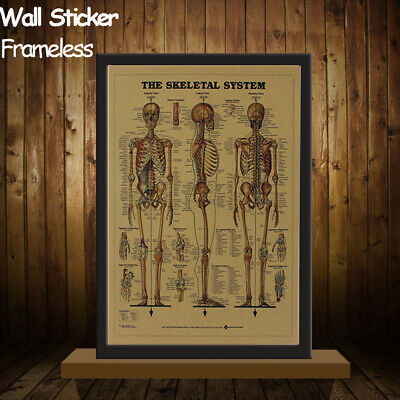 Body Structure Mural Retro Poster The Skeleton System Kraft Paper Wall Sticker