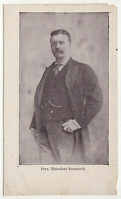 PRESIDENT THEODORE ROOSEVELT PC Postcard POLITICAL Nashville Tennessee SOUTHERN